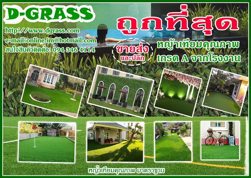 Dgrass หญ้าเทียม รั้วต้นไม้เทียม ปูพื้น ติดผนัง ราคาพิเศษ