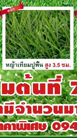 DGrass หญ้าเทียม ปูพื้น 3.5 ซม
