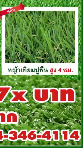 DGrass หญ้าเทียม ปูพื้น 4 ซม