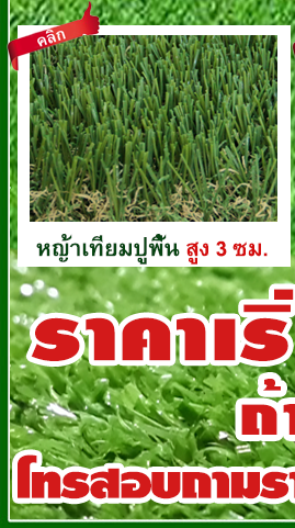 DGrass หญ้าเทียม ปูพื้น 3 ซม