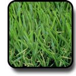 หญ้าเทียม 4ซม มีหญ้าแห้ง