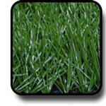 หญ้าเทียม 5ซม สีเขียวเข้ม
