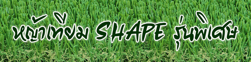 ขาย หญ้าเทียม ราคาถูก ขายส่ง หญ้าเทียมคุณภาพสูง หญ้าตกแต่ง สนามหญ้า หญ้าปลอม fake grass Artificial Grass