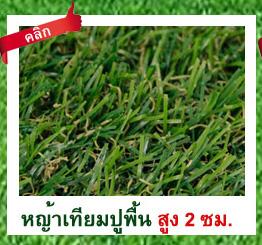 DGrass หญ้าเทียม ปูพื้น 2 ซม