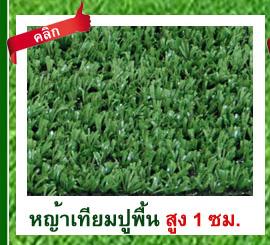 DGrass หญ้าเทียม ปูพื้น 1 ซม
